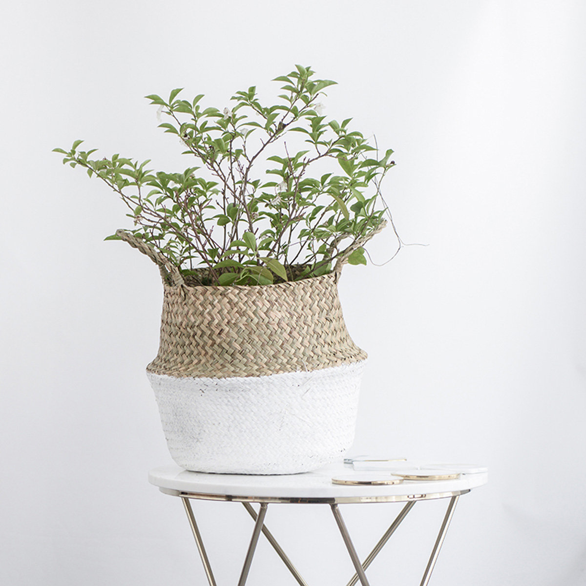 Seagrass-belly-basket-from-Newchic