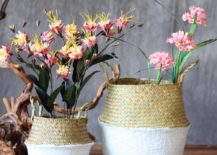 Seagrass-plant-baskets-with-white-paint-217x155