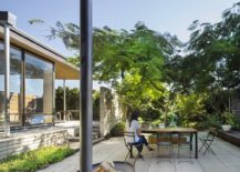 Silk-tree-and-natural-canopy-gives-the-home-plenty-of-shade-217x155