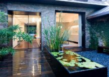 Slim-water-feature-for-the-contemporary-entry-217x155