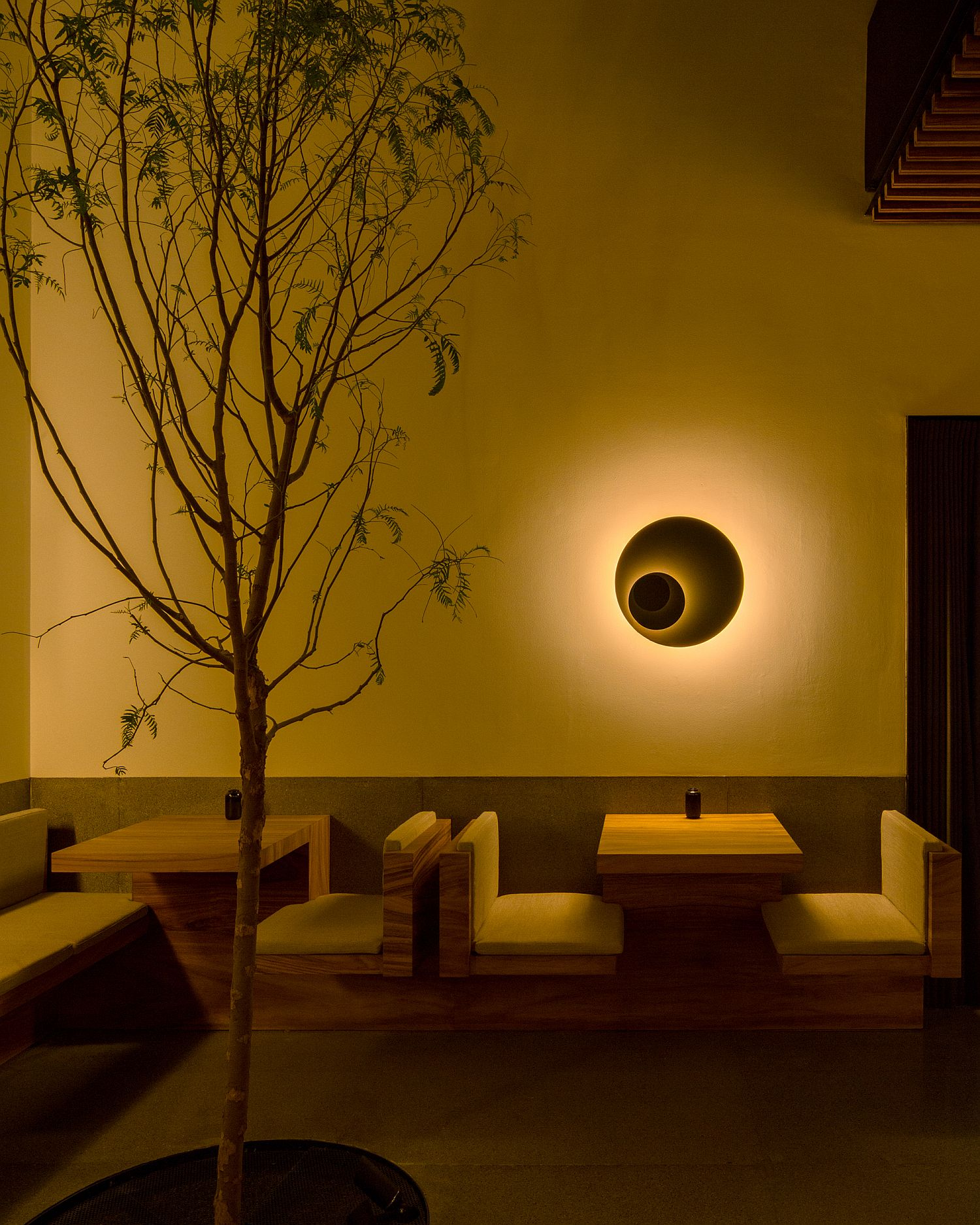 Lighting-and-greenery-give-the-interior-a-curated-appeal