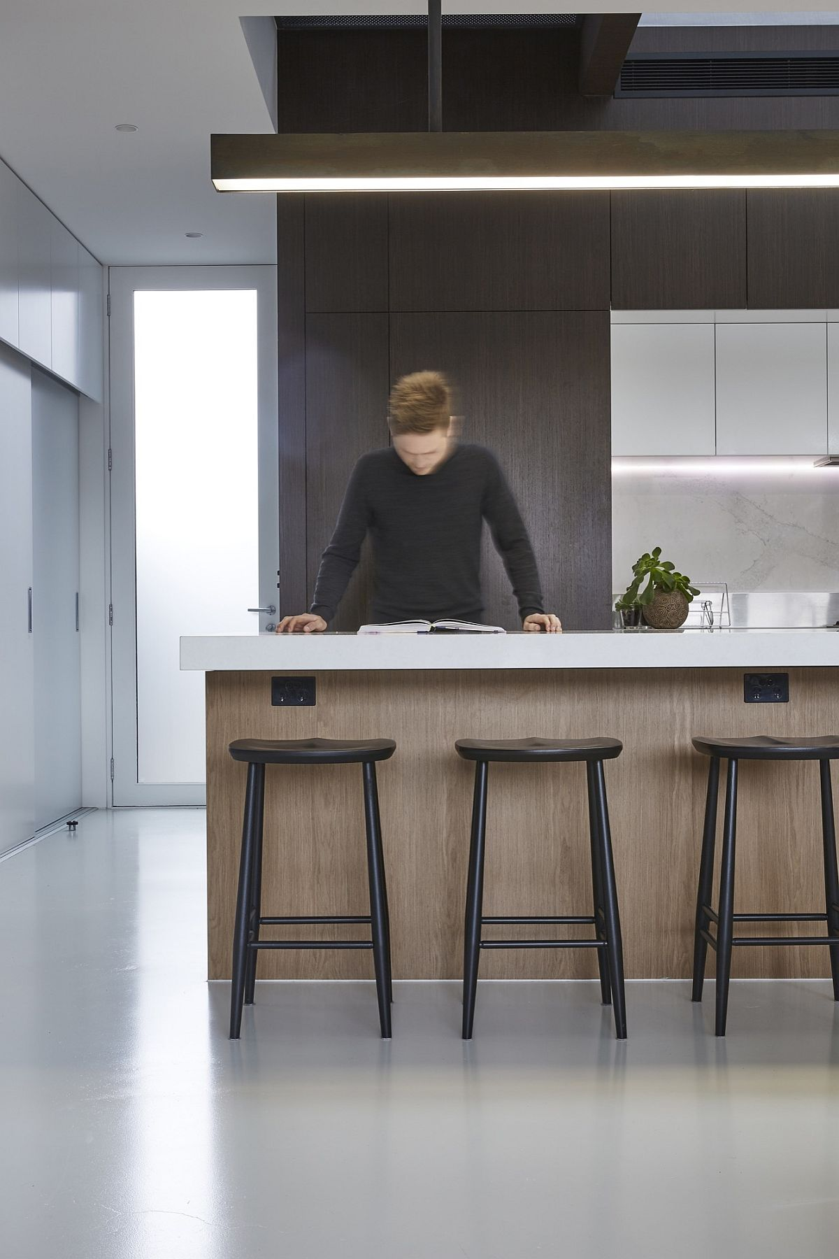 Sleek and polished kitchen in wood and gray