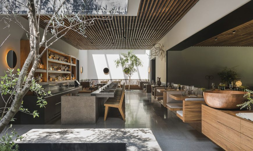 Dine with a Difference: Local Flavor Finds Modern Expression at Pujol
