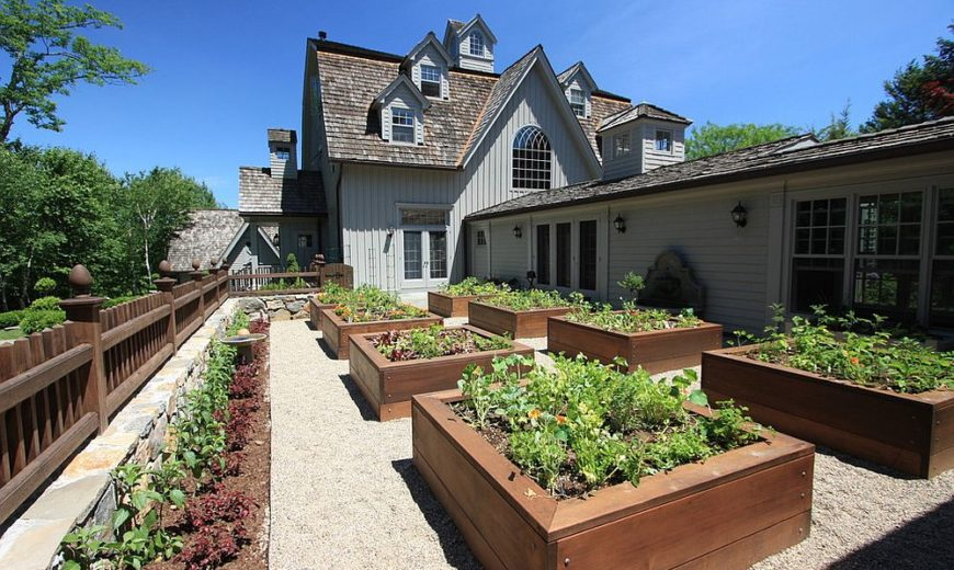 Creating an Edible Garden That is Functional and Stylish
