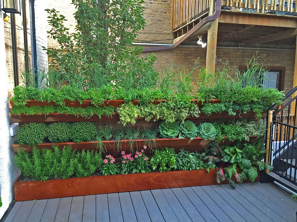 A vertical garden for the edible plants is teh best way forward in the urban landscape