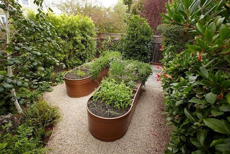 Lovely bronze water trough beds used for a smart edible garden