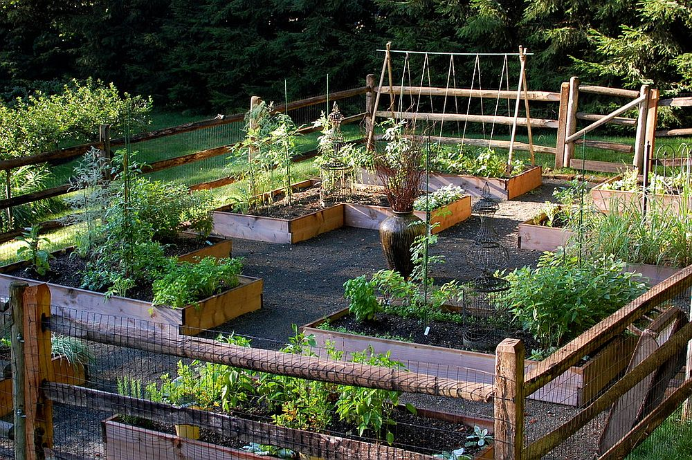 Organic soil and raised beds turn the forgotten landscape into a lovely vegetable garden