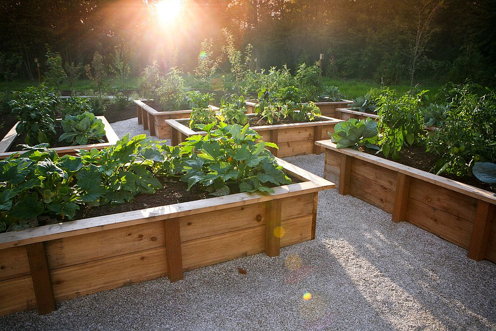 Rustic landscape with a beautiful edible garden at its heart!
