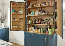 Beautiful-and-unique-custom-pantry-in-blue-stands-on-its-own-217x155