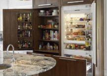 Custom-unit-houses-pantry-that-offers-plenty-of-storage-area-for-everything-in-the-kitchen-217x155