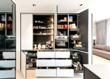Exquisite-contemporary-pantry-with-pull-out-cabinets-and-ample-storage-space-217x155