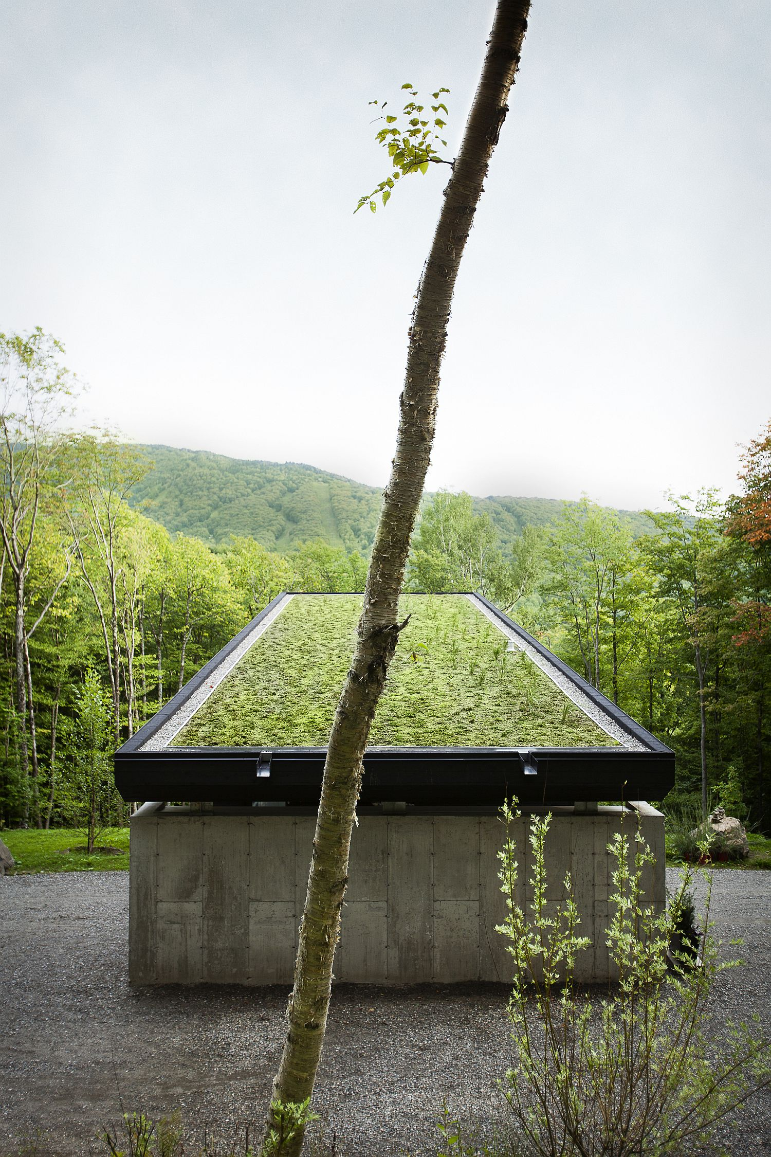 Gorgeous green roof of the modern mountain home in Sutton