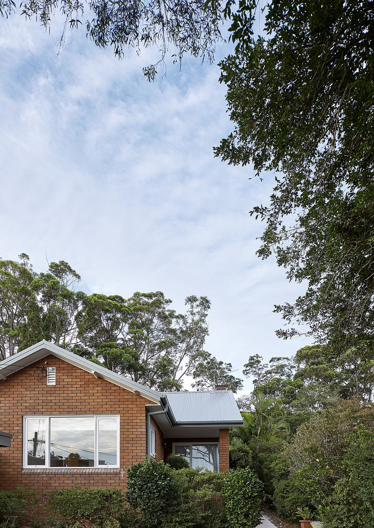 Renovated-1950S-bungalow-in-the-suburbs-of-Sydney