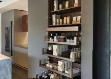 Slim-and-stylish-pantry-for-the-minimal-contemporary-kitchen-217x155