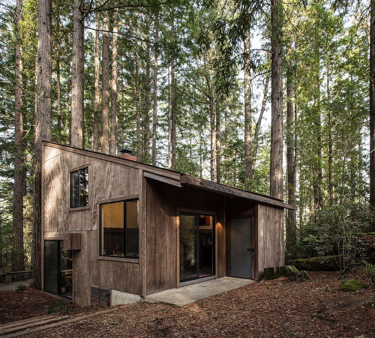 Timber Ridge Sea Ranch Cabin