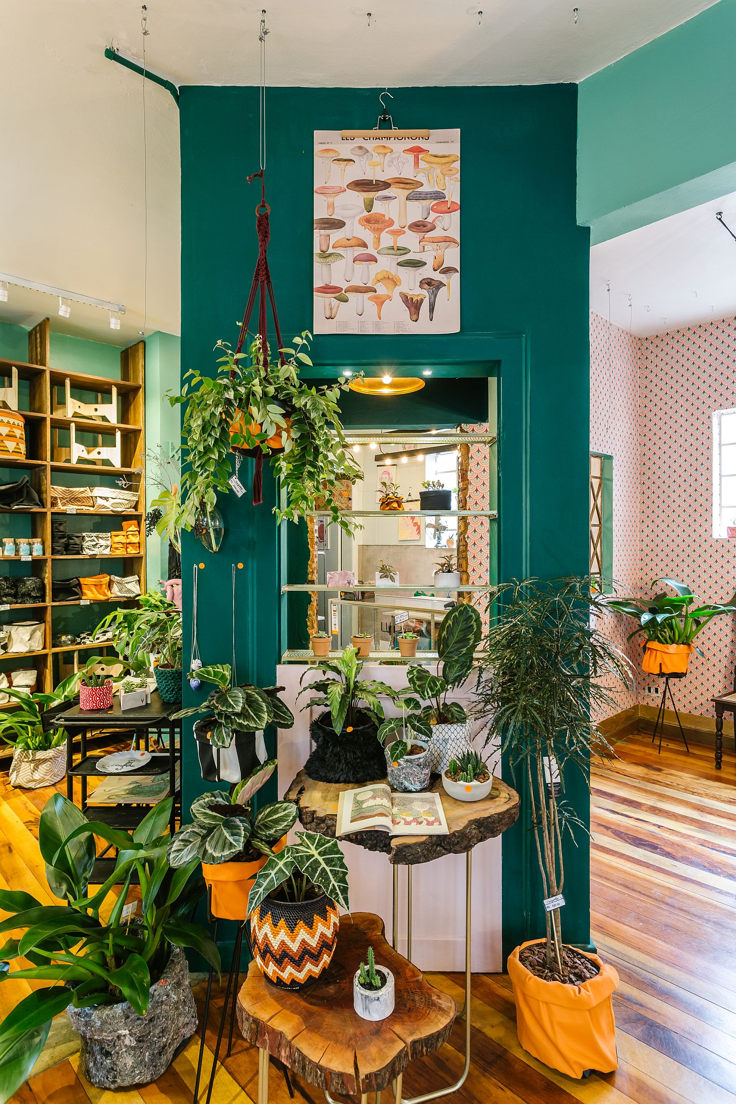 Classic Brazilian cafe combined with plants store Borealis in downtown store