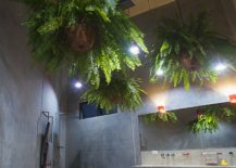 Modern-bathroom-in-concrete-with-hanging-plants-217x155