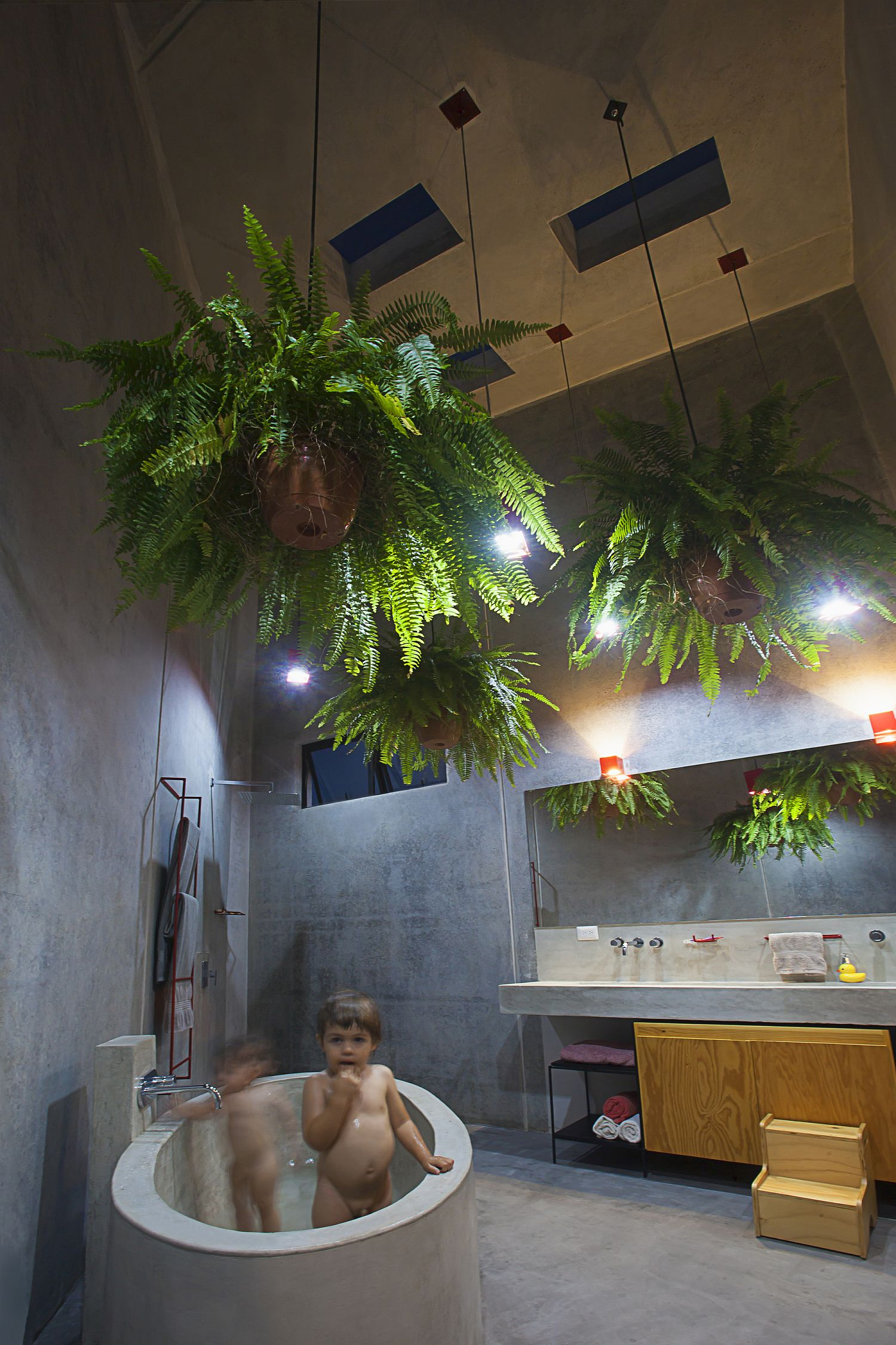 Modern bathroom in concrete with hanging plants