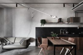 Tiny Apartment with Loft Level and Adaptable Wall Makes a Big Impact!