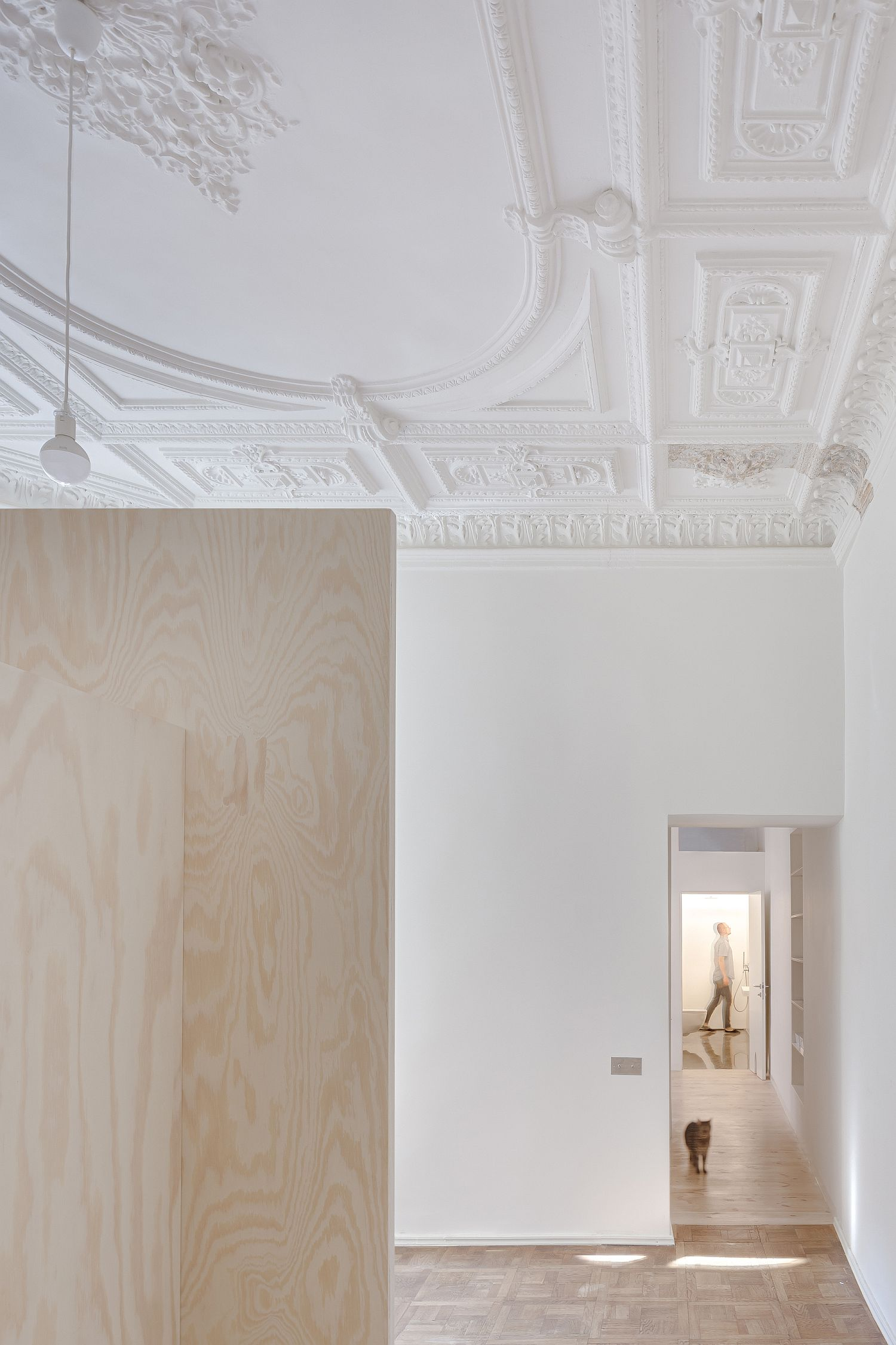 Gorgeous-and-classic-ceiling-with-ornate-pattern