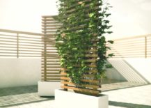 Modern-planters-and-trellises-217x155
