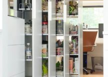 More-modern-and-innovative-approach-to-pantry-design-217x155
