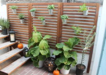 Outdoor-wall-panel-project-217x155