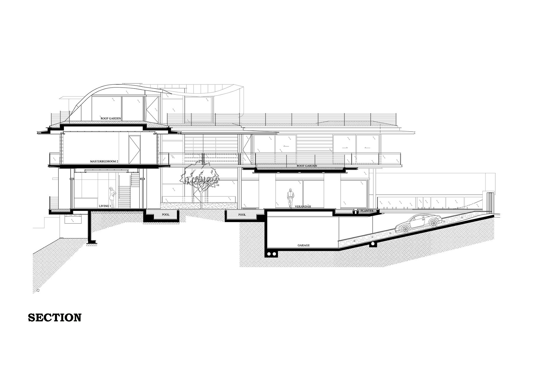 Sectional view of the Ficus House