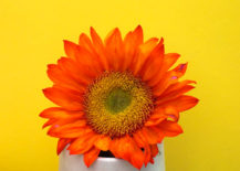Tabletop-decor-can-be-sunny-rather-than-spooky-217x155