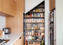 Contemporary-kitchen-with-pantry-in-the-corner-217x155