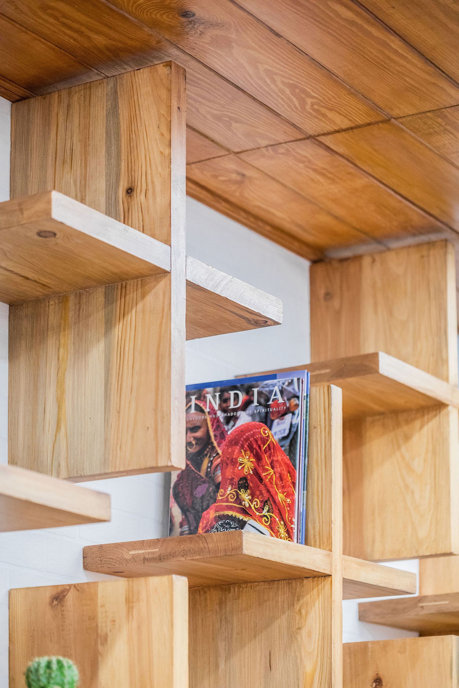 Innovative bookshelf design combines minimalism with woodsy charm