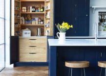 Pantry-doors-in-blue-offer-additional-storage-space-217x155