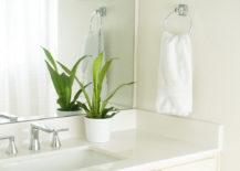 Tasseled-shower-curtain-in-a-beachy-bathroom-217x155
