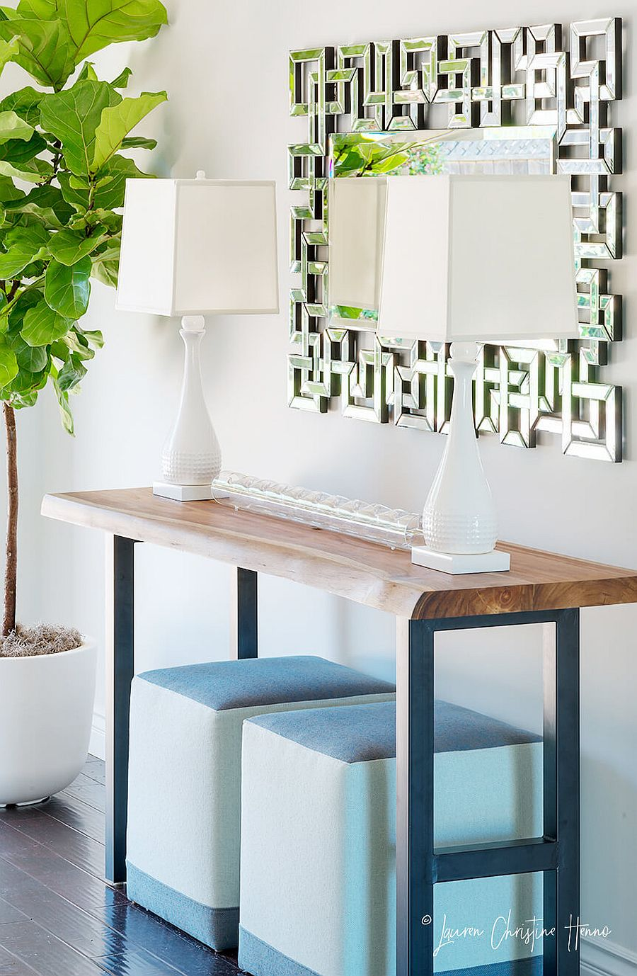 Entry with console table and twin table lamps along with lush green plant next to it