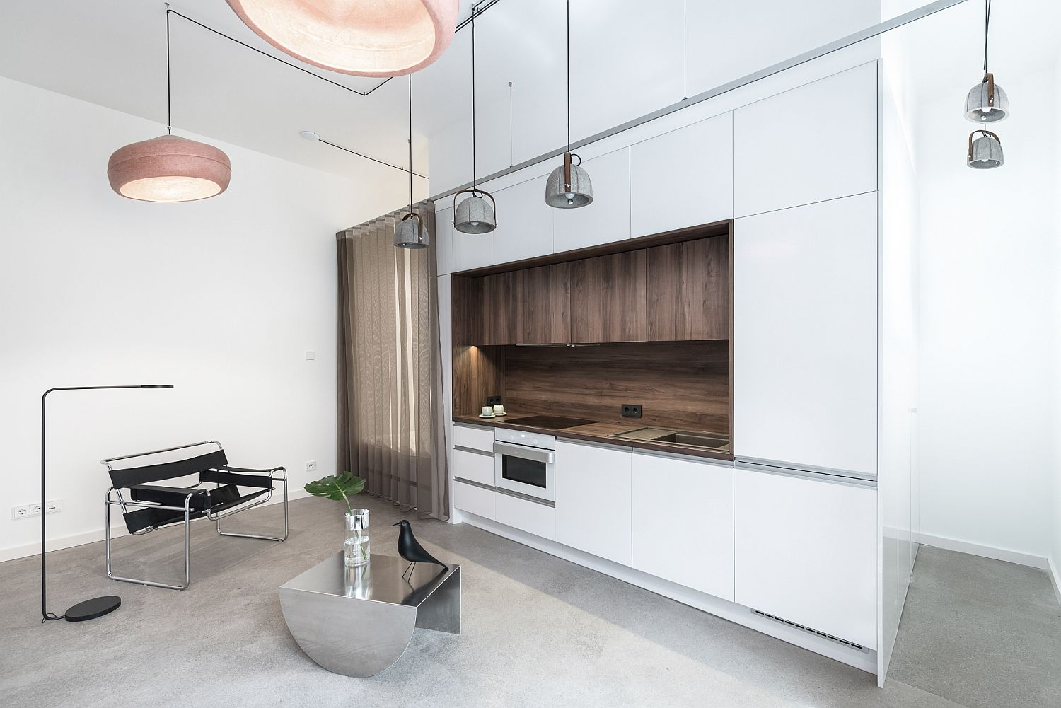 Central kitchen bedroom and bathroom unit defines the tiny apartment