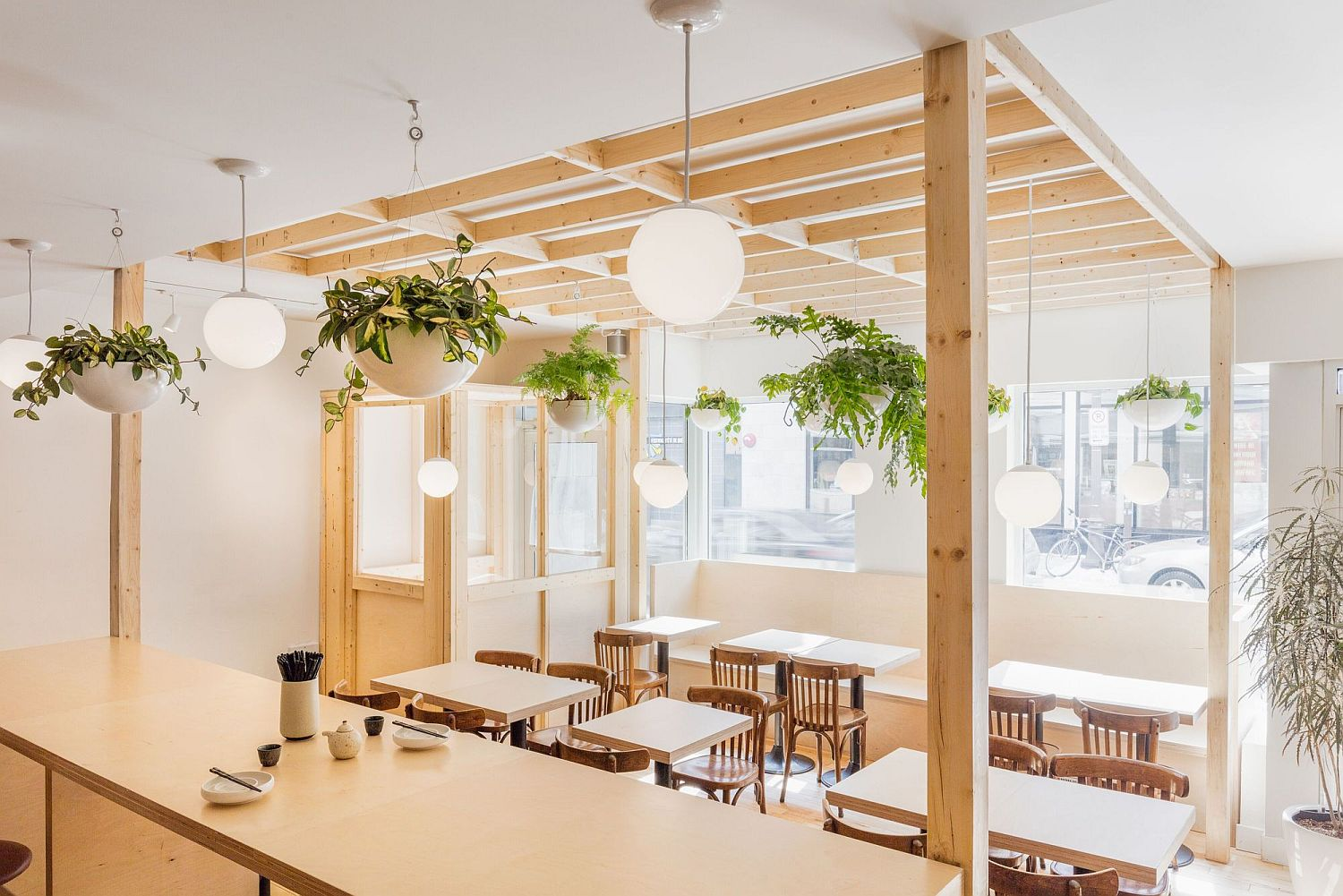 Hanging-plants-add-greenery-to-the-cafe-interior