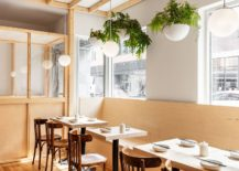 Large-windows-bring-in-ample-light-illuminating-the-diner-217x155