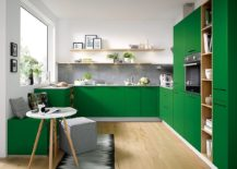 Bright-green-kitchen-cabinets-and-decor-instantly-uplift-the-vibe-of-this-modern-kitchen-217x155