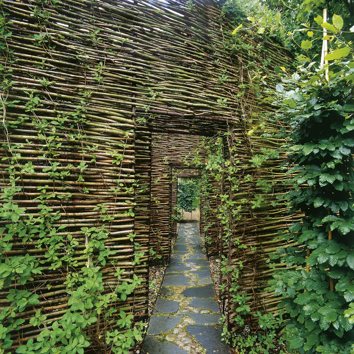 Teahouse and outdoor sauna alongw ith series of outdoor walls that add natural flair to the retreat