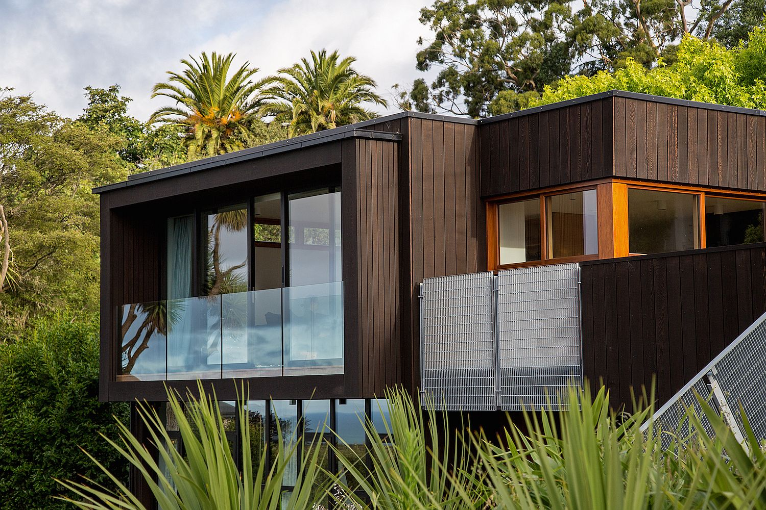 Western-Red-Cedar-and-Siberian-Larch-exterior-of-Christchurch-home