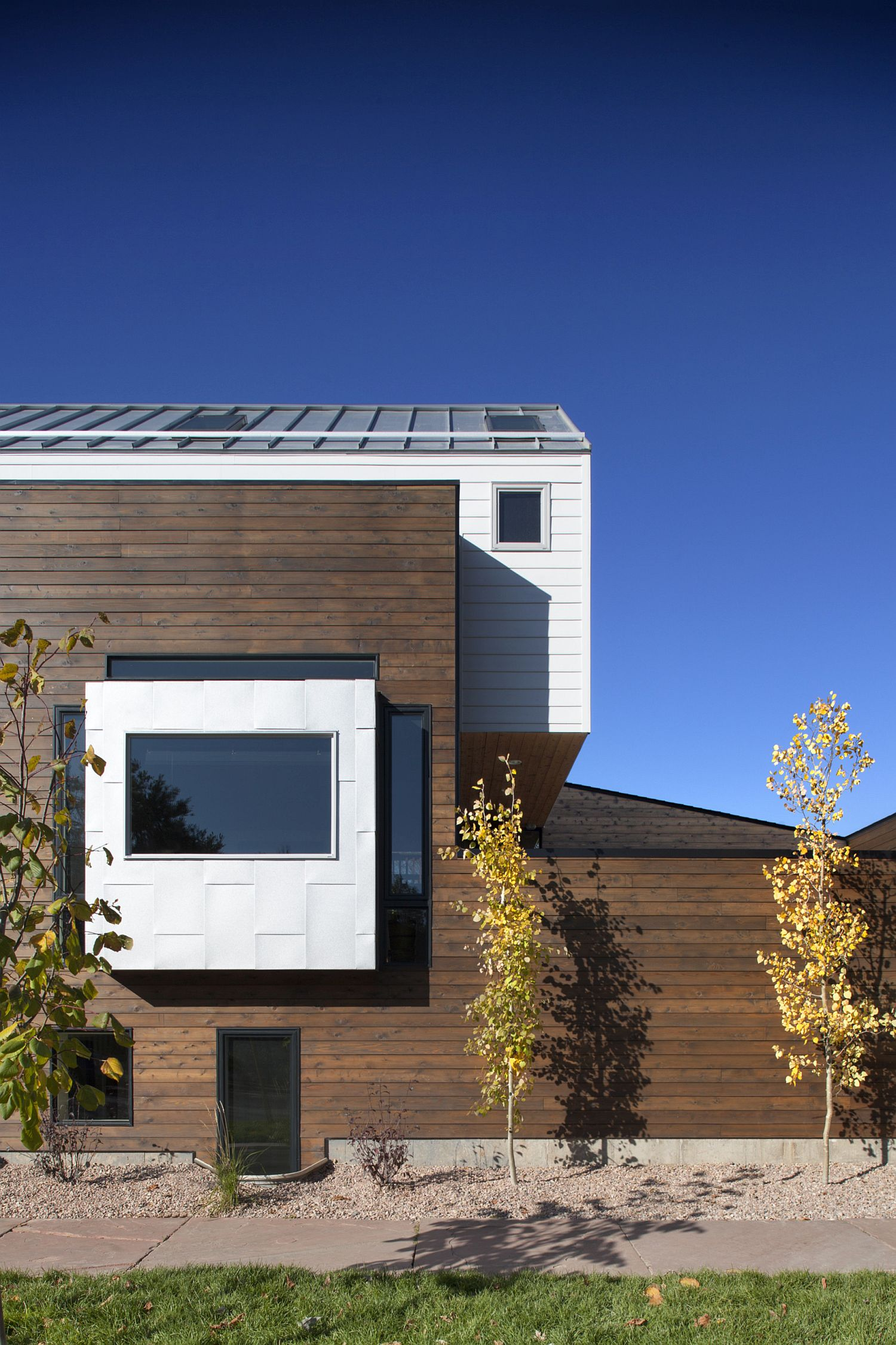 Western Red Cedar exterior of the modern house