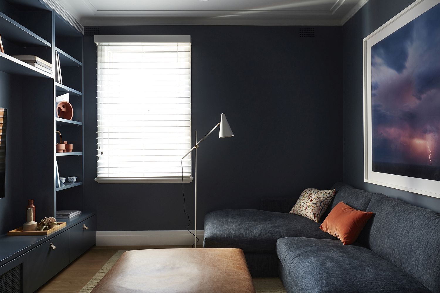 Dark gray rooom with TV and ample shelving