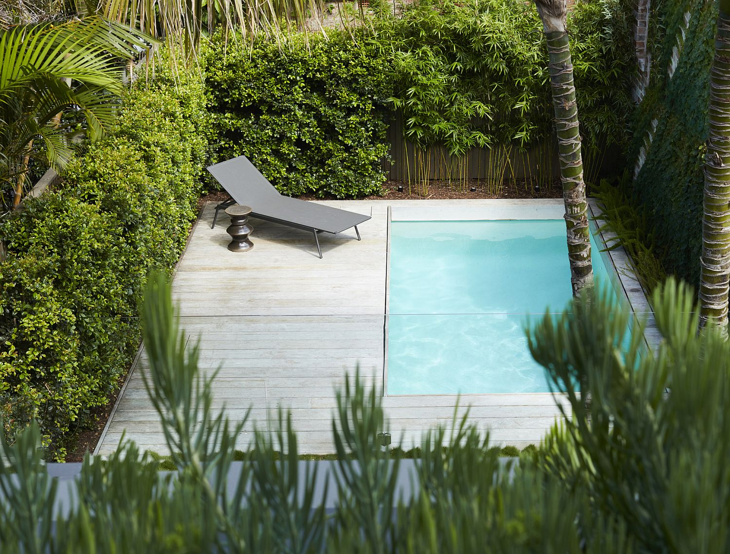 Small pool area and deck with greenery all around