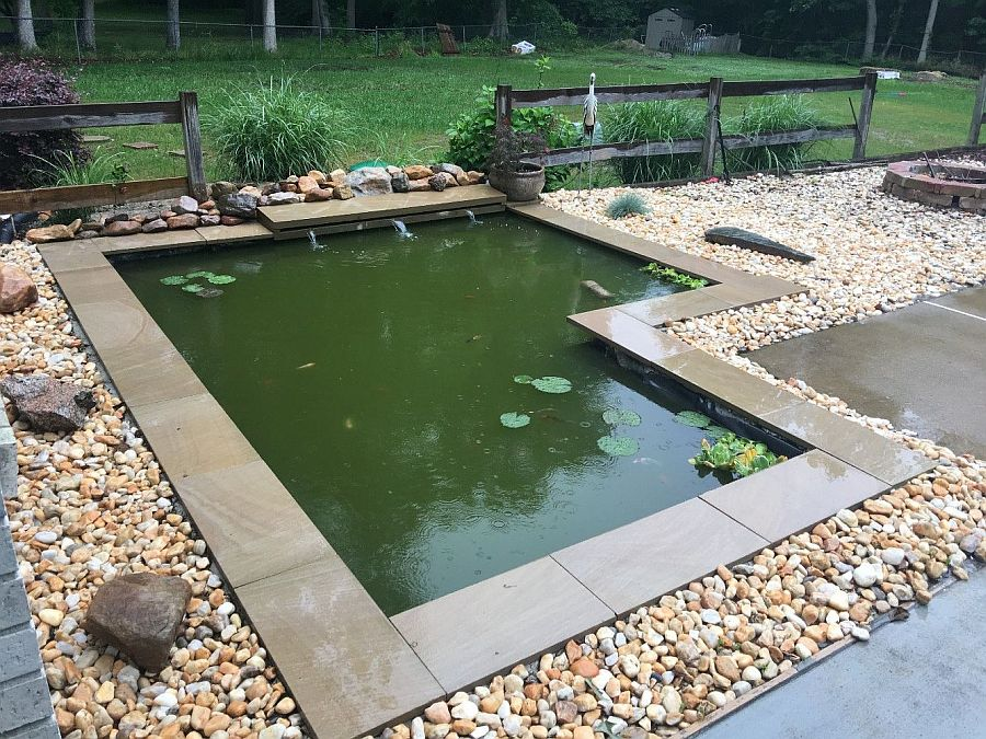 25 Cheap DIY Ponds to Bring Life to Your Garden
