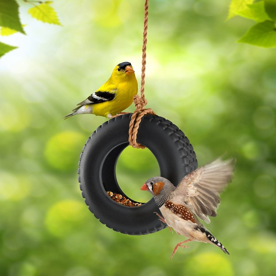 Create-your-own-tire-swing-bird-feeder-this-summer