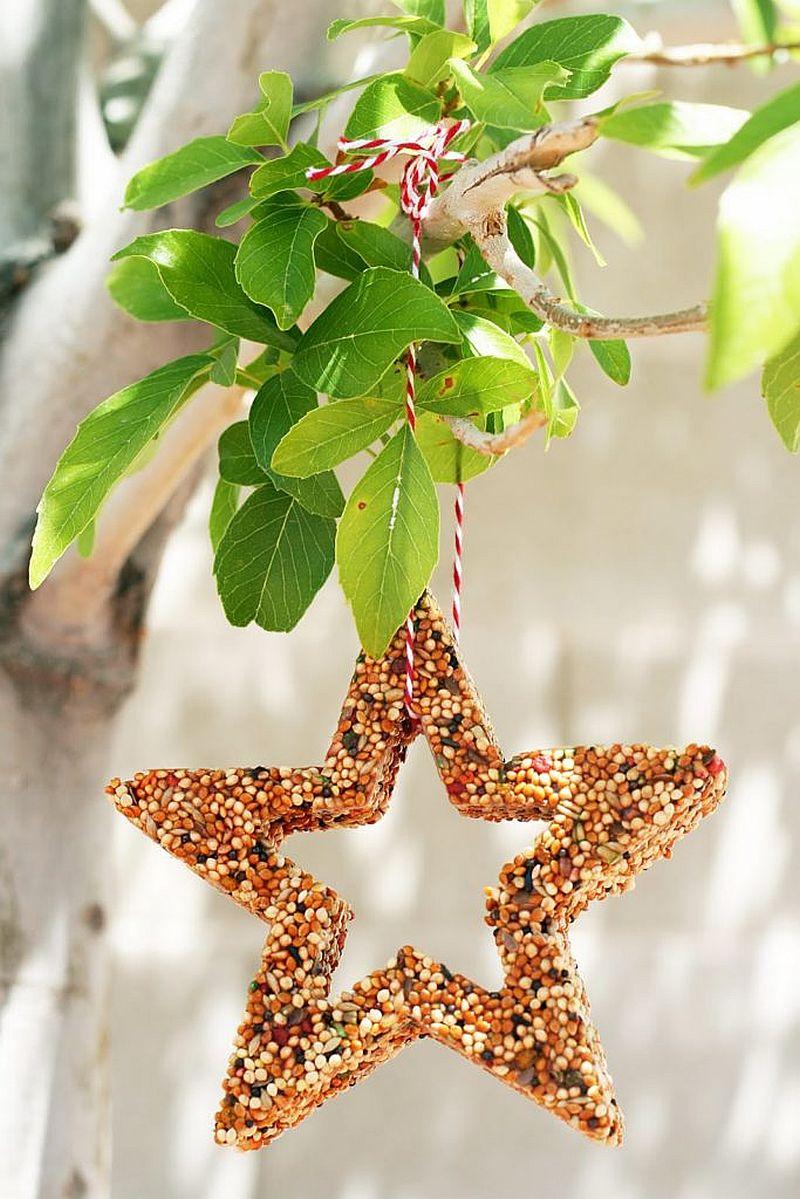 Custom-star-shaped-bird-feeder-idea-for-the-trendy-garden