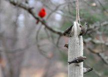 DIY-Burlap-Thistle-Sock-bird-feeder-217x155