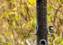 DIY-Tube-style-bird-feeder-from-Family-Handyman-217x155