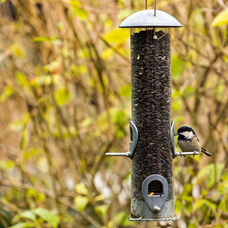 DIY-Tube-style-bird-feeder-from-Family-Handyman