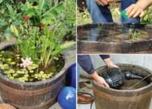 DIY-Water-feature-can-be-something-as-simple-as-a-pond-in-a-barrel-217x155